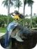 Русалка на Бали