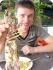 Мантис - гигантская креветка